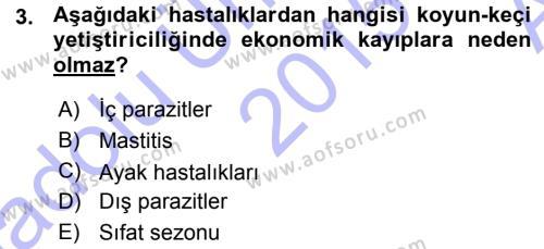 Temel Sürü Sağlığı Yönetimi Dersi 2015 - 2016 Yılı (Vize) Ara Sınav Soruları 3. Soru