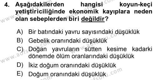 Temel Sürü Sağlığı Yönetimi Dersi 2015 - 2016 Yılı (Vize) Ara Sınav Soruları 4. Soru
