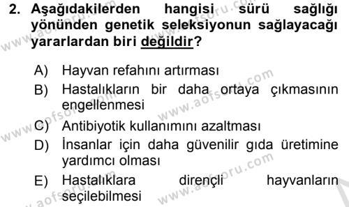 Temel Sürü Sağlığı Yönetimi Dersi 2017 - 2018 Yılı (Vize) Ara Sınav Soruları 2. Soru