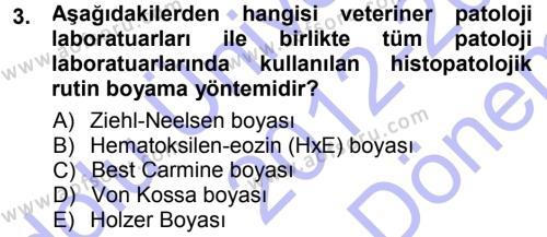 Temel Veteriner Patoloji Dersi 2012 - 2013 Yılı (Final) Dönem Sonu Sınav Soruları 3. Soru