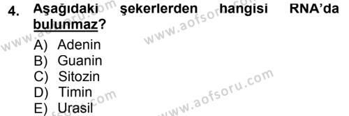 Temel Veteriner Patoloji Dersi 2012 - 2013 Yılı (Final) Dönem Sonu Sınav Soruları 4. Soru