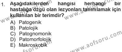 Temel Veteriner Patoloji Dersi 2012 - 2013 Yılı Tek Ders Sınavı 1. Soru