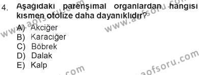 Temel Veteriner Patoloji Dersi 2012 - 2013 Yılı Tek Ders Sınavı 4. Soru