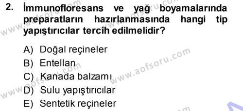 Temel Veteriner Patoloji Dersi 2013 - 2014 Yılı (Vize) Ara Sınav Soruları 2. Soru
