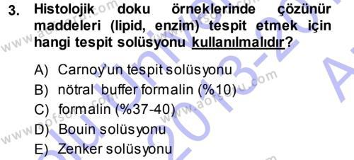 Temel Veteriner Patoloji Dersi 2013 - 2014 Yılı (Vize) Ara Sınav Soruları 3. Soru