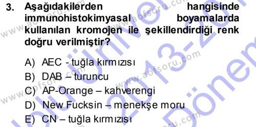 Temel Veteriner Patoloji Dersi 2013 - 2014 Yılı (Final) Dönem Sonu Sınav Soruları 3. Soru