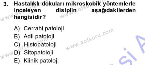 Temel Veteriner Patoloji Dersi 2014 - 2015 Yılı (Vize) Ara Sınav Soruları 3. Soru