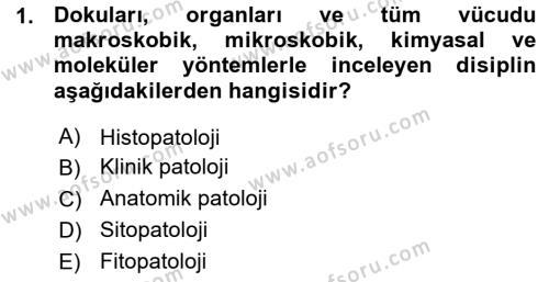 Temel Veteriner Patoloji Dersi 2015 - 2016 Yılı (Vize) Ara Sınav Soruları 1. Soru