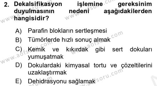 Temel Veteriner Patoloji Dersi 2017 - 2018 Yılı (Final) Dönem Sonu Sınav Soruları 2. Soru