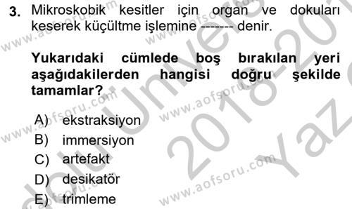Temel Veteriner Patoloji Dersi 2018 - 2019 Yılı Yaz Okulu Sınav Soruları 3. Soru