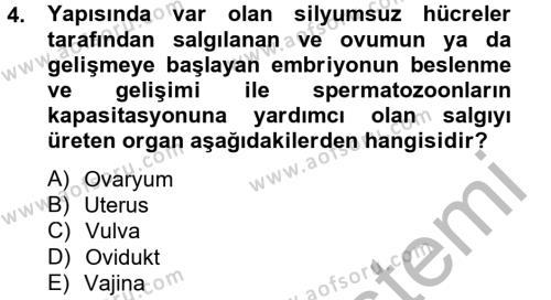Doğum Bilgisi ve Suni Tohumlama Dersi 2012 - 2013 Yılı (Vize) Ara Sınav Soruları 4. Soru