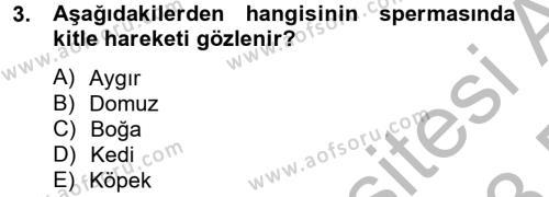 Doğum Bilgisi ve Suni Tohumlama Dersi 2012 - 2013 Yılı (Final) Dönem Sonu Sınav Soruları 3. Soru