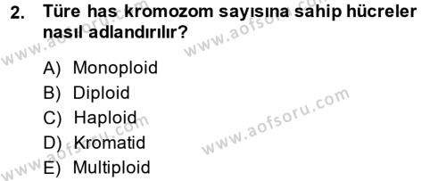 Doğum Bilgisi ve Suni Tohumlama Dersi 2013 - 2014 Yılı (Final) Dönem Sonu Sınav Soruları 2. Soru