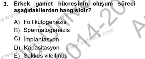 Doğum Bilgisi ve Suni Tohumlama Dersi 2014 - 2015 Yılı Ara Sınavı 3. Soru