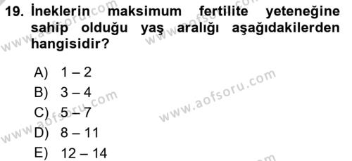 Doğum Bilgisi ve Suni Tohumlama Dersi 3 Ders Sınavı Deneme Sınav Soruları 19. Soru