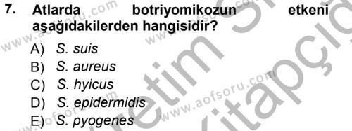 Veteriner Mikrobiyoloji ve Epidemiyoloji Dersi Ara Sınavı Deneme Sınav Soruları 7. Soru