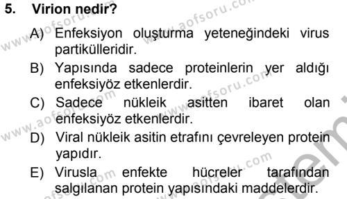 Viroloji Dersi Ara Sınavı Deneme Sınav Soruları 5. Soru