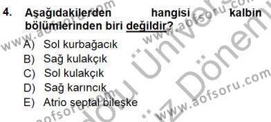 Sağlık Yönetimi Bölümü 5. Yarıyıl Tıbbi Terminoloji Dersi 2013 Yılı Güz Dönemi Dönem Sonu Sınavı 4. Soru