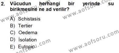 Sağlık Yönetimi Bölümü 5. Yarıyıl Tıbbi Terminoloji Dersi 2014 Yılı Güz Dönemi Tek Ders Sınavı 2. Soru