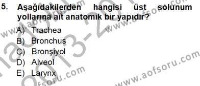 Sağlık Yönetimi Bölümü 5. Yarıyıl Tıbbi Terminoloji Dersi 2014 Yılı Güz Dönemi Tek Ders Sınavı 5. Soru