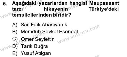 İngilizce Öğretmenliği Bölümü 4. Yarıyıl Güzel Sanatlar Dersi 2014 Yılı Bahar Dönemi Ara Sınavı 5. Soru