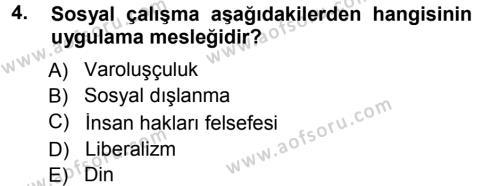 Sosyal Bilimler Bölümü 1. Yarıyıl Sosyal Hizmete Giriş Dersi 2013 Yılı Güz Dönemi Dönem Sonu Sınavı 4. Soru