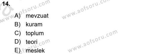 Sosyal Hizmete Giriş Dersi Ara Sınavı Deneme Sınav Soruları 14. Soru