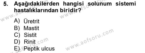 Sosyal Bilimler Bölümü 2. Yarıyıl Temel Sağlık Hizmetleri Dersi 2013 Yılı Bahar Dönemi Ara Sınavı 5. Soru