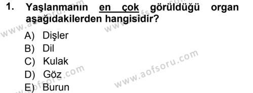 Yaşlı ve Hasta Bakım Hizmetleri Dersi 2012 - 2013 Yılı Ara Sınavı 1. Soru