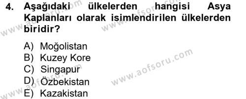 Uluslararası İlişkiler Bölümü 4. Yarıyıl Gelişmekte Olan Ülkelerde Siyaset Dersi 2013 Yılı Bahar Dönemi Dönem Sonu Sınavı 4. Soru