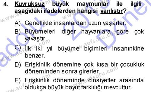 Kültürel Miras ve Turizm Bölümü 3. Yarıyıl Antropoloji Dersi 2014 Yılı Güz Dönemi Dönem Sonu Sınavı 4. Soru