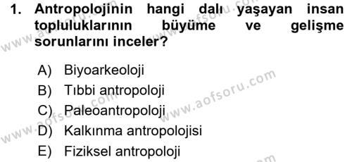 Kültürel Miras ve Turizm Bölümü 3. Yarıyıl Antropoloji Dersi 2016 Yılı Güz Dönemi Ara Sınavı 1. Soru