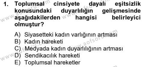 Toplumsal Tabakalaşma ve Eşitsizlik Dersi 2012 - 2013 Yılı (Vize) Ara Sınav Soruları 1. Soru