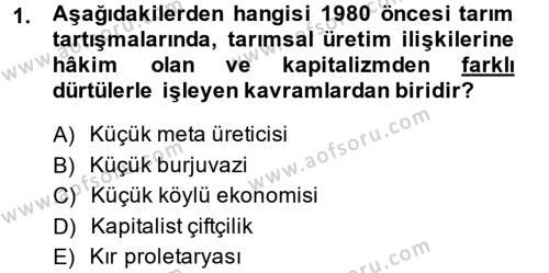 Toplumsal Tabakalaşma ve Eşitsizlik Dersi 2014 - 2015 Yılı Dönem Sonu Sınavı 1. Soru
