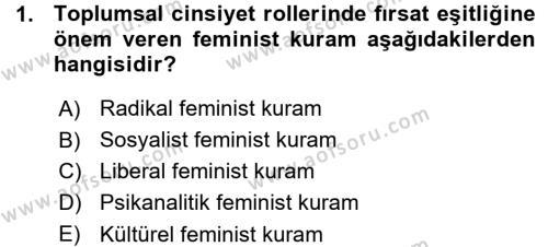 Sosyoloji Bölümü 5. Yarıyıl Toplumsal Cinsiyet Sosyolojisi Dersi 2016 Yılı Güz Dönemi Ara Sınavı 1. Soru