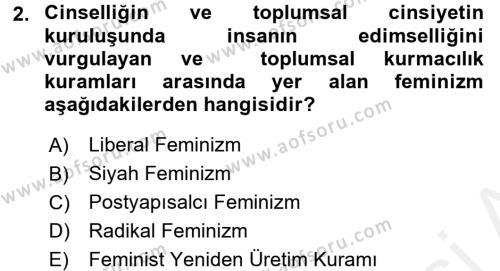 Toplumsal Cinsiyet Sosyolojisi Dersi 2017 - 2018 Yılı (Final) Dönem Sonu Sınav Soruları 2. Soru
