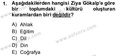Türk Sosyologları Dersi 2013 - 2014 Yılı Dönem Sonu Sınavı 1. Soru