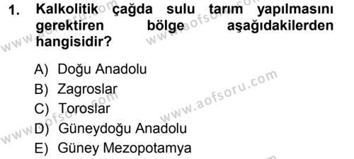 Tarih Bölümü 1. Yarıyıl Eski Anadolu Tarihi Dersi 2013 Yılı Güz Dönemi Ara Sınavı 1. Soru