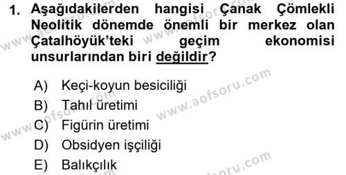 Tarih Bölümü 1. Yarıyıl Eski Anadolu Tarihi Dersi 2016 Yılı Güz Dönemi Dönem Sonu Sınavı 1. Soru