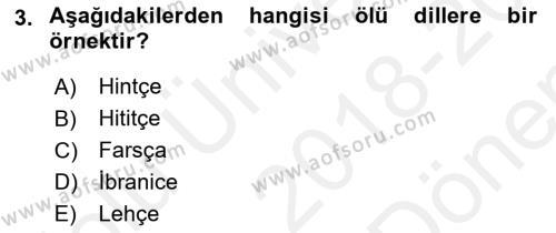 Eski Anadolu Tarihi Dersi 2018 - 2019 Yılı (Final) Dönem Sonu Sınav Soruları 3. Soru