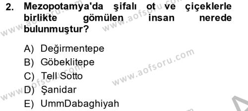 Tarih Bölümü 2. Yarıyıl Eski Mezopotamya ve Mısır Tarihi Dersi 2014 Yılı Bahar Dönemi Ara Sınavı 2. Soru