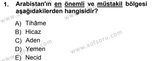 Tarih Bölümü 1. Yarıyıl İslam Tarihi ve Medeniyeti I Dersi 2013 Yılı Güz Dönemi Ara Sınavı 1. Soru