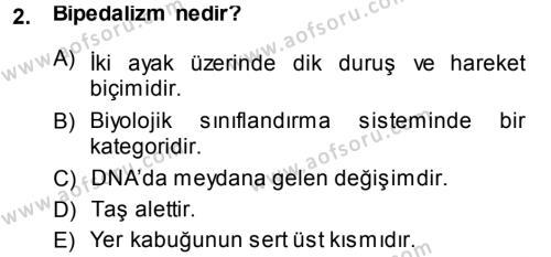 Felsefe Bölümü 1. Yarıyıl Uygarlık Tarihi I Dersi 2014 Yılı Güz Dönemi Ara Sınavı 2. Soru