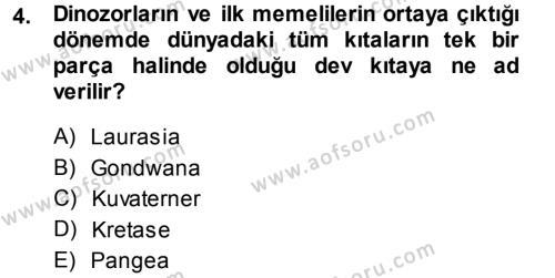 Felsefe Bölümü 1. Yarıyıl Uygarlık Tarihi I Dersi 2014 Yılı Güz Dönemi Ara Sınavı 4. Soru