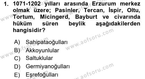 Türkiye Selçuklu Tarihi Dersi 2016 - 2017 Yılı Ara Sınavı 1. Soru