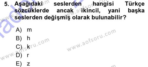 Türkçe Ses Bilgisi Dersi Ara Sınavı Deneme Sınav Soruları 5. Soru