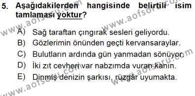 Türk Dili ve Edebiyatı Bölümü 3. Yarıyıl Türkçe Cümle Bilgisi I Dersi 2016 Yılı Güz Dönemi Ara Sınavı 5. Soru