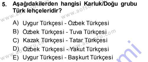 Türk Dili ve Edebiyatı Bölümü 5. Yarıyıl Çağdaş Türk Yazı Dilleri I Dersi 2014 Yılı Güz Dönemi Ara Sınavı 5. Soru