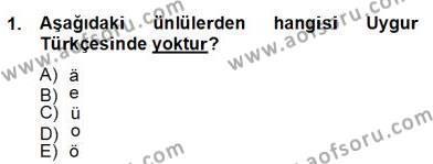 Türk Dili ve Edebiyatı Bölümü 6. Yarıyıl Çağdaş Türk Yazı Dilleri II Dersi 2013 Yılı Bahar Dönemi Dönem Sonu Sınavı 1. Soru