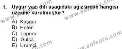 Türk Dili ve Edebiyatı Bölümü 6. Yarıyıl Çağdaş Türk Yazı Dilleri II Dersi 2014 Yılı Bahar Dönemi Dönem Sonu Sınavı 1. Soru